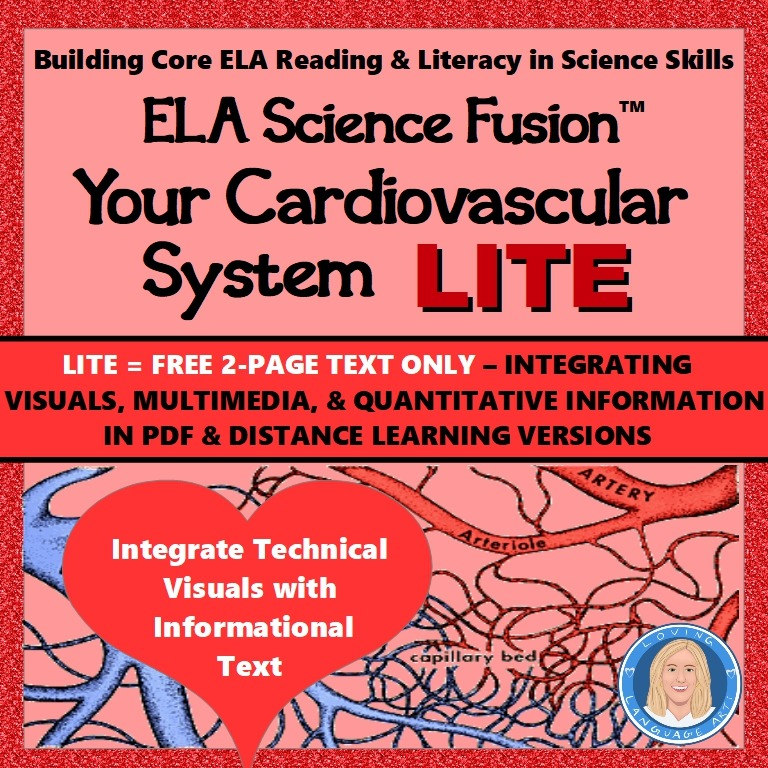 free informational text cardiovascular system